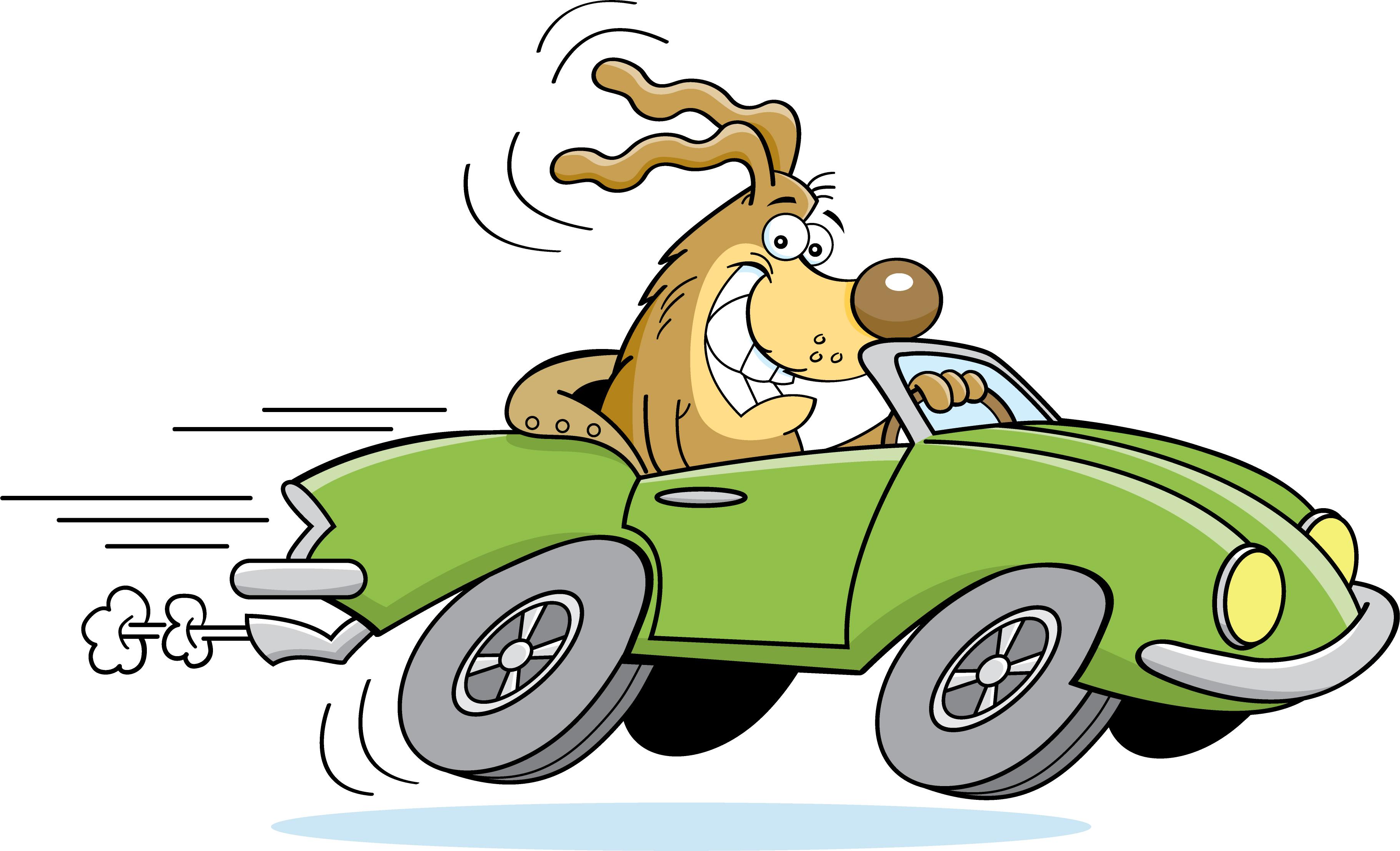cartoon dog driving car